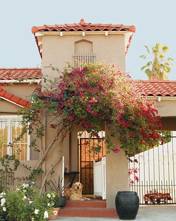 La spanish home 1